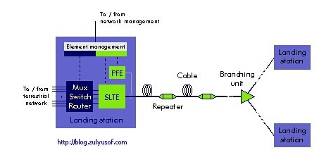 Typical Undersea Cable System
