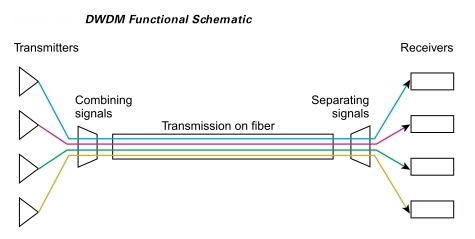 DWDM Functional Schematic